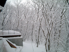 2005-12-23snow3
