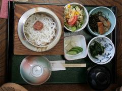 20061209fujikawa_shirauo02