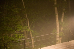 20070915foggy_night02